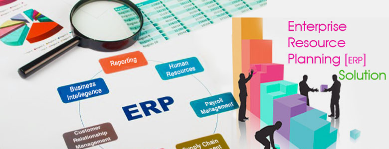 Outsourcing ERP – Company Can Help To Eliminate Implementation Risks